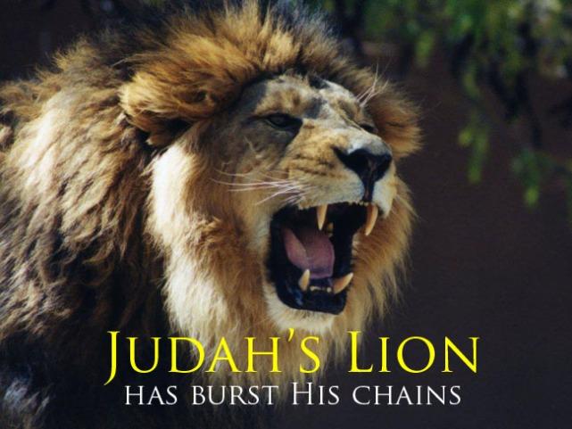 JudahsLion650pw