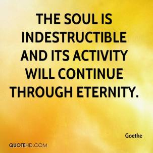 goethe-quote-the-soul-is-indestructible-and-its-activity-will
